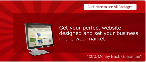 Just the Right Website for your Business